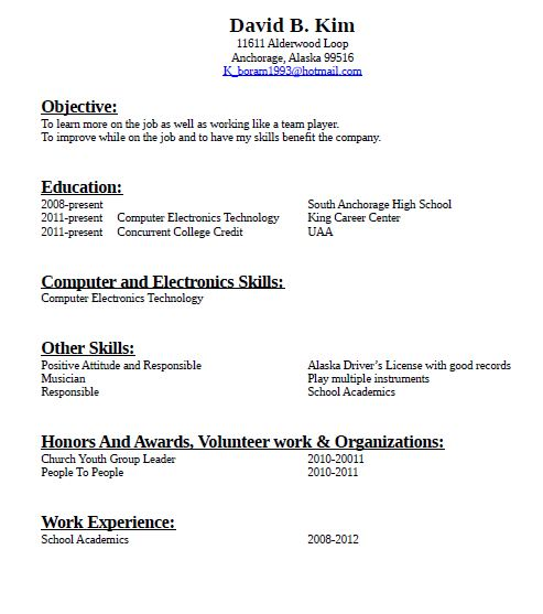 Writing A Resumes Guidelines For Resume Writing Examples Resume